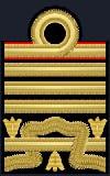Ammiraglio di Squadra con incarichi speciali